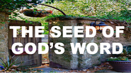 The-seed-of-gods-word